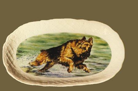 cane-vassoio